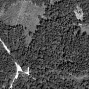 Katasterplan 1:1.000, ehem. KZ-Lagergelände großteils Grundstücke 111/1 und 112/3 und 113/1; An der Vegetation sind deutlich die ehem. Standorte der Baracken erkennbar