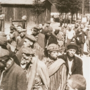 Survivors leave the camp, May 1945