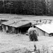 Lagergelände 1958