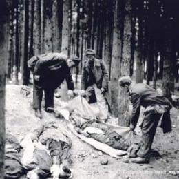 Leichen von Häftlingen, Mai 1945